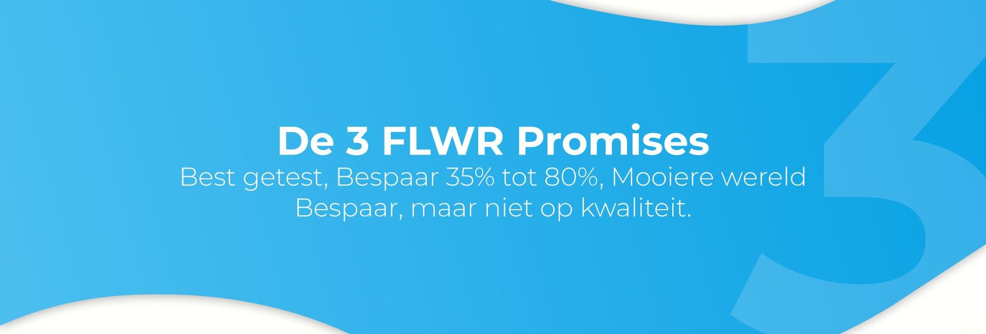 promises three